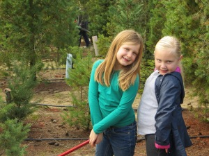 We love cutting down our tree with friends. The tree farm always has fun things like hay rides and train rides for the kids.